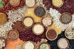 Cereals And Food Grains