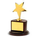 Angad Personalized Gift Shop Brown And Golden Award Trophies