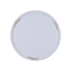 PLASTIC MORAL PLATE