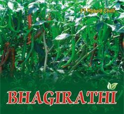 Bhagirathi F-1 Hybrid Chilli Seed