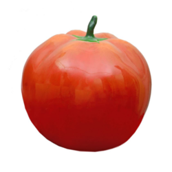Tomato An Learning Model