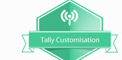 Tally Customization Service | Aaradhya Solutions | Service Provider