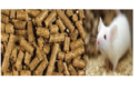 Lab Animal Feed And Diet