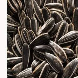 Dried Sunflower Seeds, For Agriculture, Packaging Type: Packet