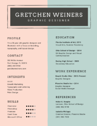 Professional resume Writing (Graphic & Classic)