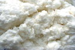 Untreated Fluff Pulp