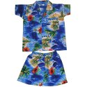 Polyester Printed Boys Shorts and Shirt Set