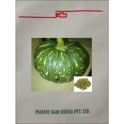 Peasant Green Pumpkin Seeds, Pack Size: 100 Seeds/Pouch