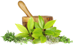 Ayurvedic PCD Pharma Franchise for Kerala