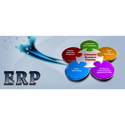 Erp Solution Services, Pan India