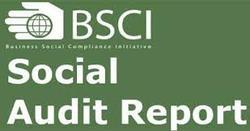 Business Social Compliance Initiative Services