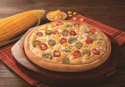 The Pizza Treat Regular and Large Pizza