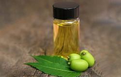 Neem Fragrance