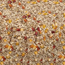 Bird Foods And Food Raw Materials