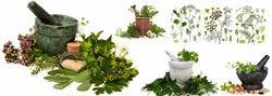 Ayurvedic Herbal Franchise in Nalbari- Assam