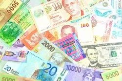 Foreign Currency Loan