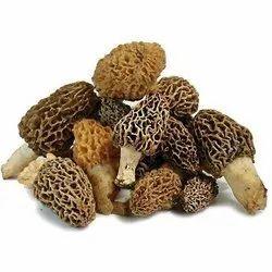Dry Morels Mushroom