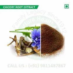 Chicory Root Extract (Cichorium Intybus, Kasni, Hinduba, Achicoria, Blue Sailors, Chakoori)