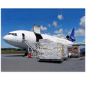 Air Freight Agent