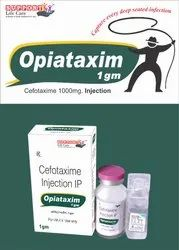 Cefotaxime Sodium 1000mg INJECTION