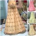 Girllest Net Fancy Lehenga Choli