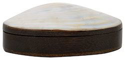 Fedora Craft Sea Shell Pearl Jewellery Box