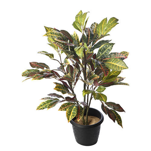 Artificial Croton Tree