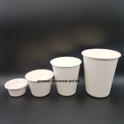 White Plain 90 ml Sugarcane Bagasse Tea Cup, Packaging Type: Box