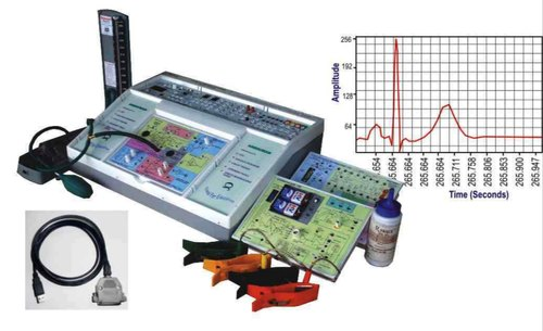 Bioinstrumental Internship