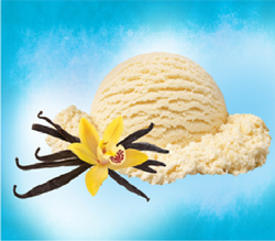 Vanila Ice Cream