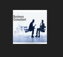 Business Consultants Service