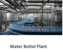 Water Bottle Plant