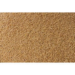 Kodo Millet, Pack Size: 25kg