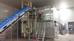 Automatic And Semi-Automatic IQF Frozen Fruits Processing Plant