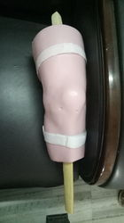Knee Arthroscopy Anatomical Model