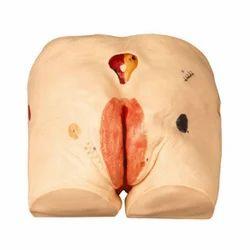 GD/H90E Decubitus ulcer care simulator