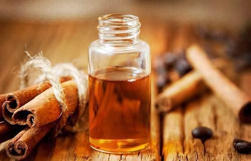 Cosmetic Oil - Cinnamon Bark Oil Manufacturer from Chennai