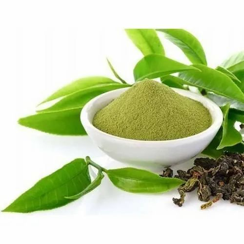 Savory Naturals Green Tea Extract, Packaging Size: 25 Kg, Packaging Type:  Hdpe Drum, Rs 1850 /kilogram   ID: 21314222062