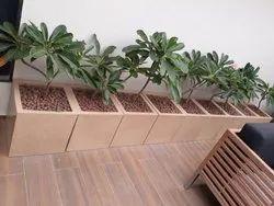 Plastic Garden Planter Size: 16