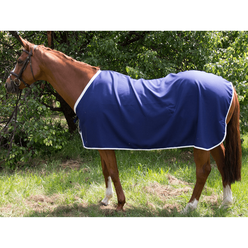 Plain Cotton Drill Horse Rugs Size 4