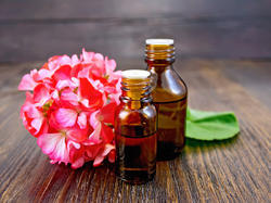 Natural Geranium Oil