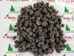 Noni  Fruit - Indian Mulberry - Morinda Citrifolia