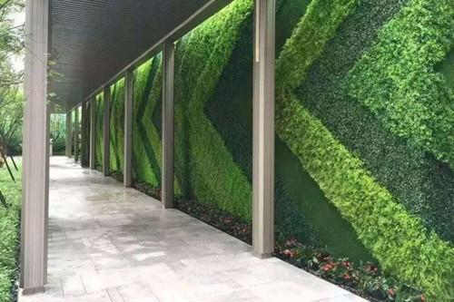 Pe Vertical Grass Wall Rs 275 Square Feet Affly Impex