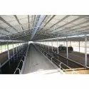 Ms Color Coated Prefabricated Dairy Farm Roofing Shed