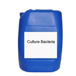 Aerobic Bacteria Culture Chemical