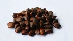 Imli Seed, Packaging Size: 50g