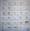 Prime Handicrafts Bone Beads