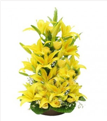 20 Yellow Asiatic Lilies Stem In A Basket