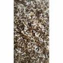 Chinese Moringa Lat Mok Seeds