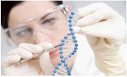 Next Generation Sequencing Analysis Services